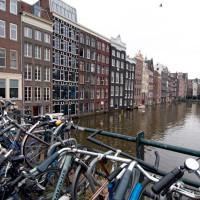 frequenze-visive-2012-mostra-amsterdam-25