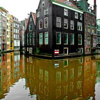 frequenze-visive-2012-mostra-amsterdam-29